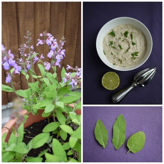 Green bean dip with sage and lime